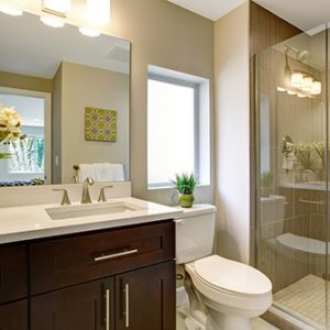 Bathroom Plumbing Fixtures